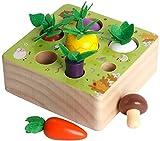 HIQE-FL Montessori holzspielzeug,Holzpuzzle Karottenernte,Happy Farm Holzspielzeug,Baby Motorik Spielzeug,Holzspielzeug ab 1 Jahr,Lernspielzeug für Kinder als Geburtztag Geschenk