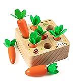 Holzspielzeug ab 1 Jahr | Baby Motorik Spielzeug für 12 Monate Jungen und Mädchen | Montessori Sortierspiel Holzpuzzle Karottenernte | Lernspielzeug für Kinder als Geburtztag Geschenk
