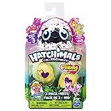 Hatchimals 6041332 - CollEGGtibles 2 Pack + Nest S3